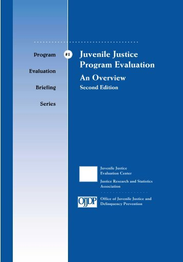 Juvenile Justice Program Evaluation: An Overview (Second Edition).