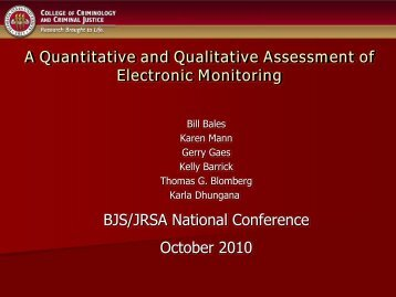 A Quantitative and Qualitative Assessment of Electronic Monitoring