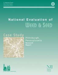 National Evaluation of Weed and Seed Pittsburgh Case Study