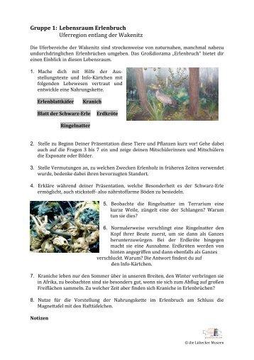 Arbeitsblatt Lehrer Maulwurf (PDF) - Jugend ins Museum