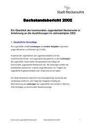 Sachstandsbericht 2002 - Kommunale Jugendarbeit Neckarsulm