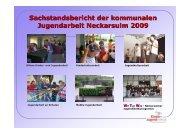 Sachstandsbericht VA 2009 - Kommunale Jugendarbeit Neckarsulm