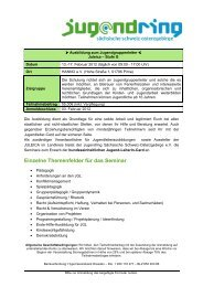 Einzelne Themenfelder für das Seminar - Jugendring Sächsische ...