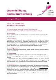 Information Zusammenarbeit Projektträger - Jugendstiftung