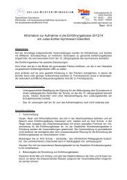 Download dieser Informationen als PDF-Datei - Julius-Echter ...