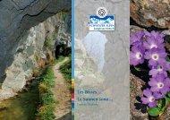 brochure - UNESCO Welterbe Schweizer Alpen Jungfrau-Aletsch