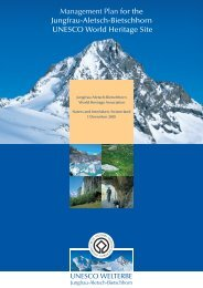 Management Plan for the Jungfrau-Aletsch-Bietschhorn UNESCO ...