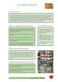 Pensando nuestro consumo - Page 5