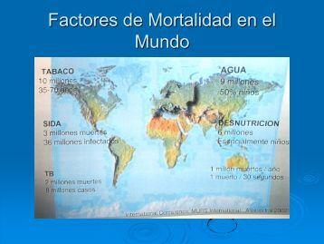 CÁTEDRAS UNESCO - Instituto de Investigaciones Jurídicas - UNAM