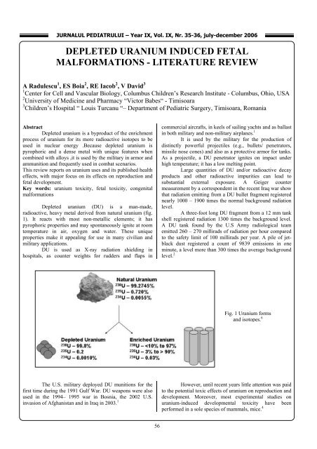depleted uranium induced fetal malformations - literature review