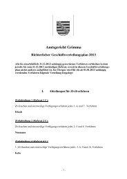 Geschäftsverteilung 2013 [Download,*.pdf, 63,51 KB] - Justiz in ...