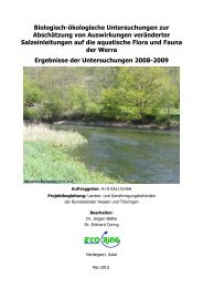 ecoring Ergebnisse der Untersuchung 2008-2009 - K+S ...