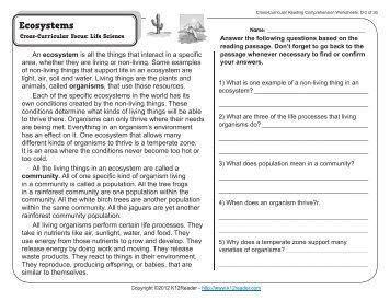 4th Grade Reading Comprehension Worksheets | Fourth Grade .