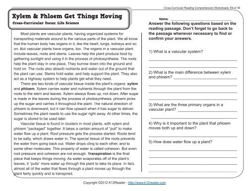 Cross Curricular Reading Comprehension Worksheets E9 Of 36
