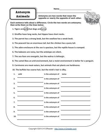 Fix the Story with Antonyms   Antonym Worksheets