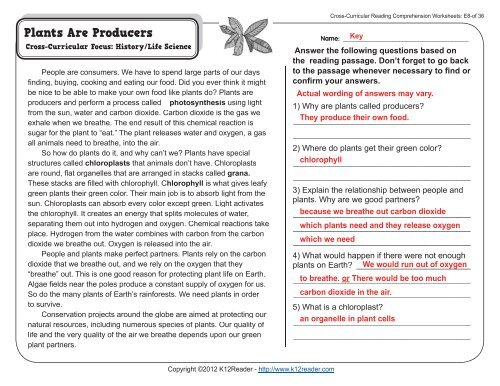 Cross Curricular Reading Comprehension Worksheets E8 Of 36