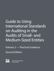 Guide to Using International Standards on Auditing in the Audits - IFAC