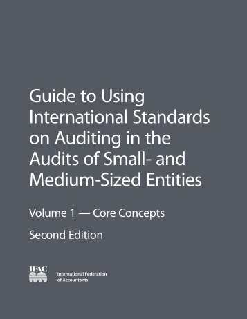 Guide to Using International Standards on Auditing in - IFAC