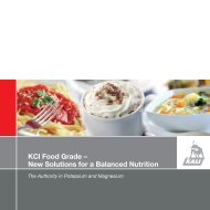 KCl Food Grade – New Solutions for a Balanced ... - K+S KALI GmbH
