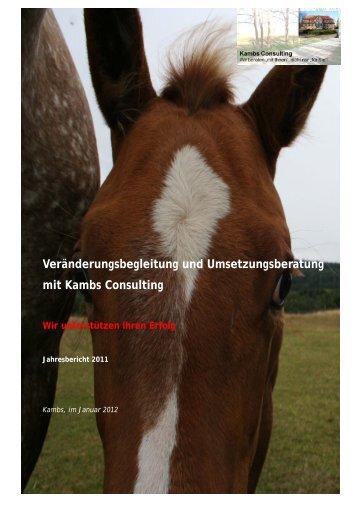 Kambs Consulting_Jahresbericht 2011.pdf