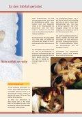 MehrWert mit Schornstein - Initiative Pro Schornstein - Seite 5