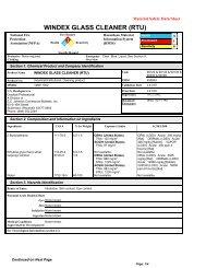 WINDEX GLASS CLEANER (RTU)