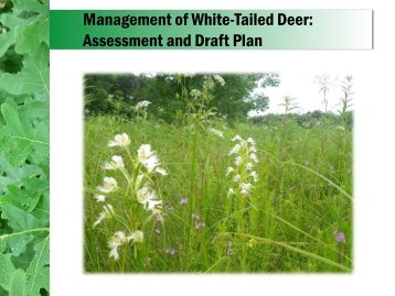 Management Of White-Tailed Deer - Forest Preserve District of Kane ...