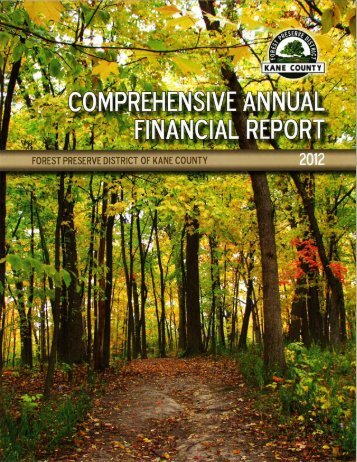 2012 Audit - Forest Preserve District of Kane County