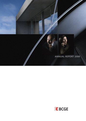BCGE Annual report 2008