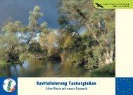 Revitalisierung Taubergießen - Kappel-Grafenhausen