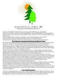 Stauden - Kapraun Garten- und Landschaftsbau
