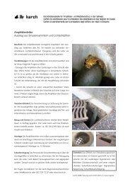 Amphibienleiter Ausstieg aus Strassensammlern und ... - karch