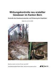 Wirkungskontrolle neu erstellter Gewässer im Kanton Bern - Karch