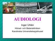 Indelning av hörselskador