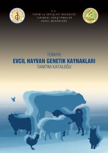 türkiye evcil hayvan genetik kaynakları - Midkkyb.org.tr