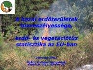 Erdőtüzek Európában