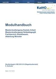 Modulhandbuch (pdf, 238.1 kb)