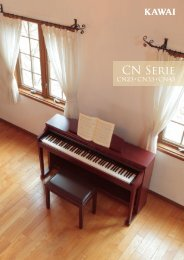 Kawai CN23/CN33/CN43 Brochure 2010 (Deutsch, version 2)