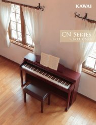 Download - Kawai CN33/CN23 Brochure 2010 (English US)