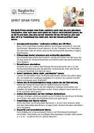 Unsere Sprit-Spar-Tipps für Sie (PDF)