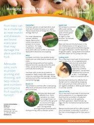 Managing Fruit Tree Pests - City of Kelowna