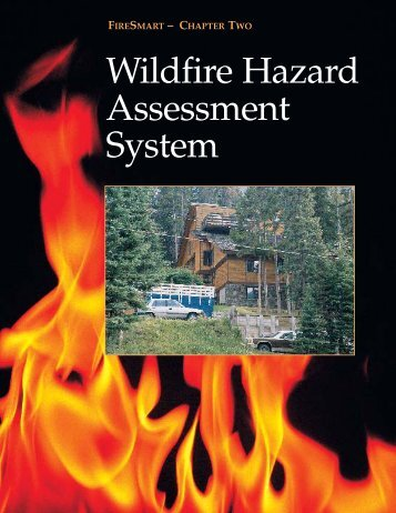 Wildfire Assessment System