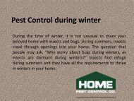 Pest Control during winter