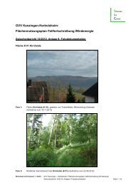 Standortuntersuchung 08 Fotodokumentation - Kenzingen