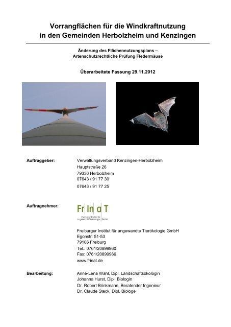 Standortuntersuchung 02 Fledermäuse - Kenzingen