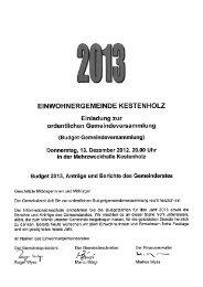 Berichterstattung mit Voranschlag (pdf, 3mb) - Gemeinde Kestenholz