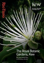 download Rio Tinto Partnership information - Royal Botanic ...