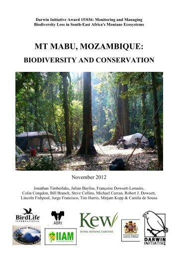 MT MABU, MOZAMBIQUE: - Royal Botanic Gardens, Kew