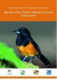 Threatened Birds of UK Overseas Territories: SAP for Montserrat ...