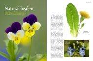 Medicinal plants - FINAL2